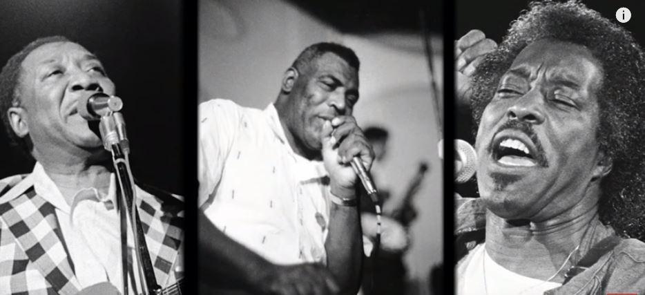 Chicago Blues Musicians